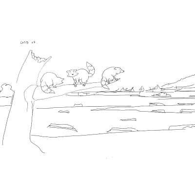 line art of raccoons overlooking a devastated landscape